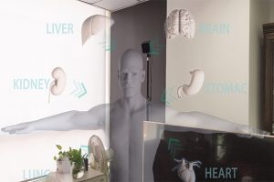 HoloLens药理展示